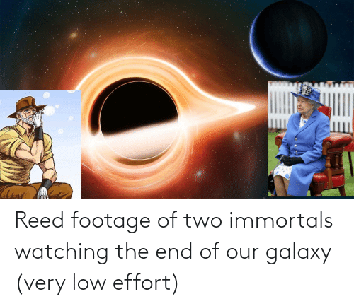 Reed: Reed footage of two immortals watching the end of our galaxy (very low effort)