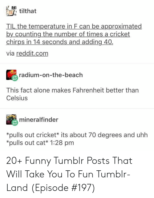 uhh: REI  Ttilthat  IL  TIL the temperature in F can be approximated  by counting the number of times a cricket  chirps in 14 seconds and adding 40  via reddit.com  radium-on-the-beach  This fact alone makes Fahrenheit better than  Celsius  mineralfinder  *pulls out cricket* its about 70 degrees and uhh  *pulls out cat* 1:28 pm 20+ Funny Tumblr Posts That Will Take You To Fun Tumblr-Land (Episode #197)