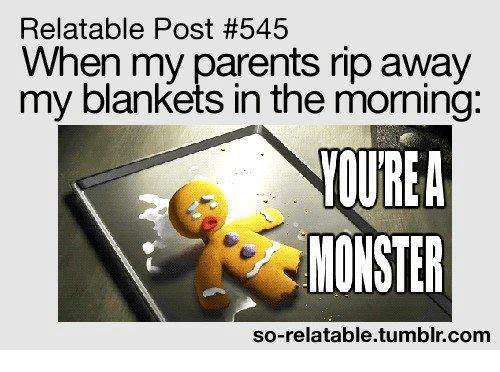 So Relatable Tumblr: Relatable Post #545  When my parents rip away  my blankets in the moming:  MONSTER  so-relatable.tumblr.com