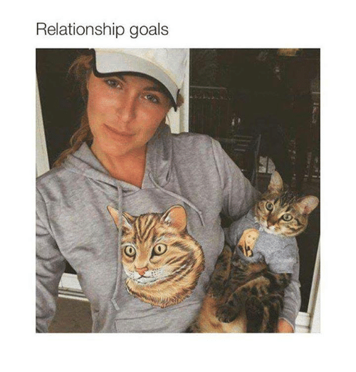 sizzle and fizzle relationship memes