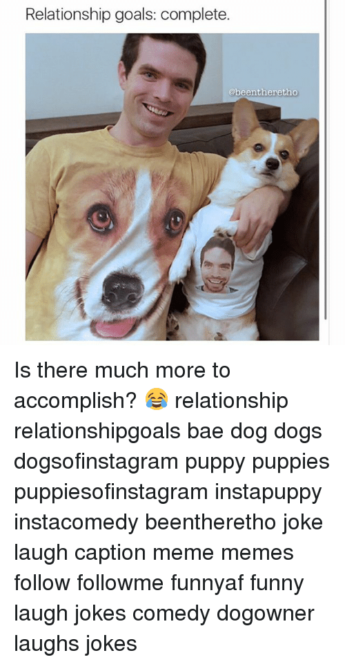 relationship goals memes funny dogs