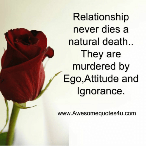 Memes, Nature, and Attitude: Relationship  never dies a  natural death.  They are  murdered by  Ego,Attitude and  Ignorance  www.Awesome quotes4u.com