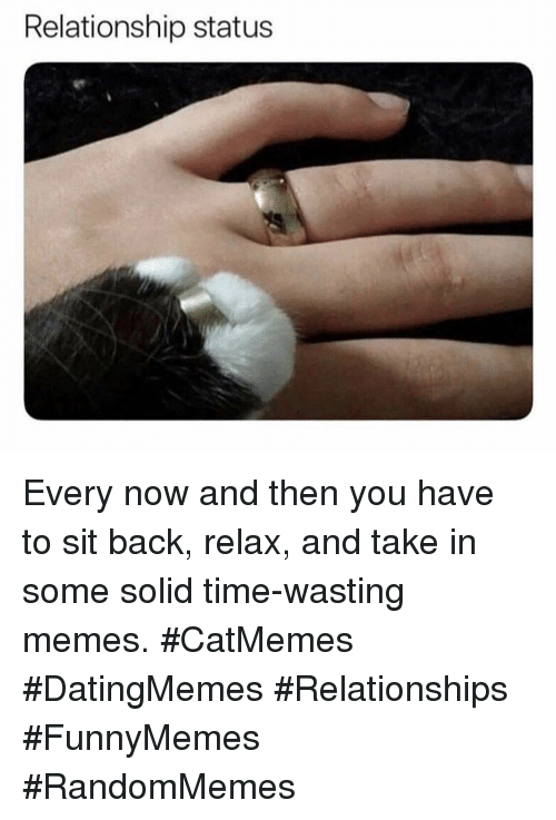 Memes, Relationships, and Time: Relationship status Every now and then you have to sit back, relax, and take in some solid time-wasting memes. #CatMemes #DatingMemes #Relationships #FunnyMemes #RandomMemes
