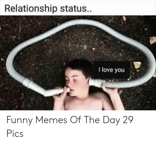 Relationship Status: Relationship status.  I love you Funny Memes Of The Day 29 Pics