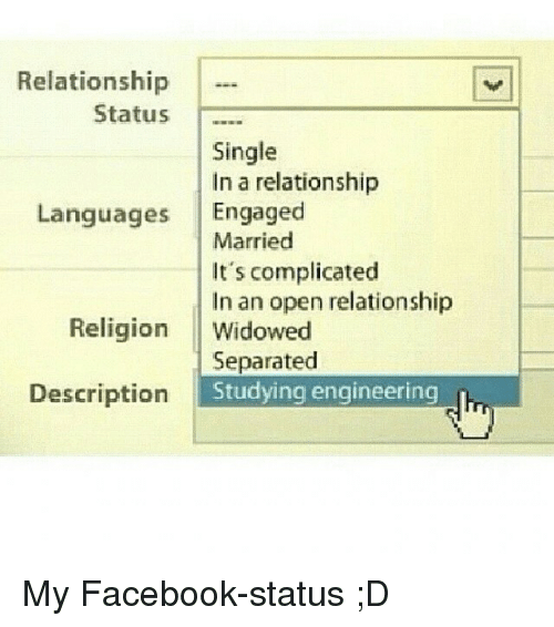 Relationship Status Single in a Relationship Languages ...