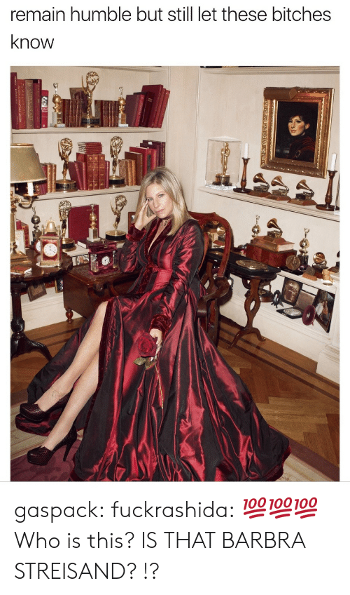 Barbra Streisand, Tumblr, and Blog: remain humble but still let these bitches  know gaspack: fuckrashida:  💯💯💯  Who is this?  IS THAT BARBRA STREISAND? !?