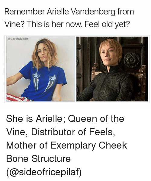 Feeling Old: Remember Arielle Vandenberg from  Vine? This is her now. Feel old yet?  @sideofricepilaf She is Arielle; Queen of the Vine, Distributor of Feels, Mother of Exemplary Cheek Bone Structure (@sideofricepilaf)