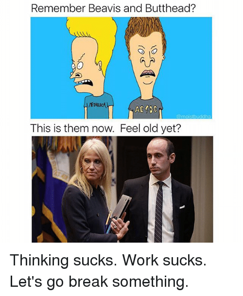 Funny, Work, and Break: Remember Beavis and Butthead?  @moistbuddha  This is them now. Feel old yet? Thinking sucks. Work sucks. Let's go break something.