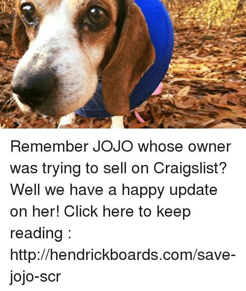 Craigslist, Memes, and Jojo: Remember JOJO whose owner was trying to sell on Craigslist? Well we have a happy update on her! Click here to keep reading : http://hendrickboards.com/save-jojo-scr