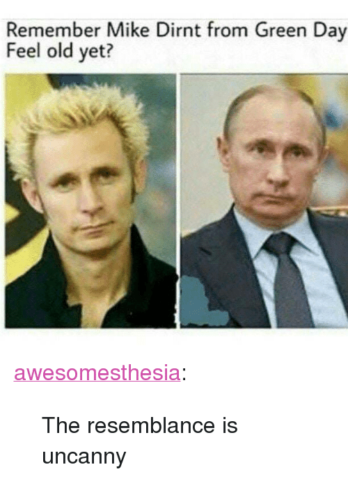 """Green Day: Remember Mike Dirnt from Green Day  Feel old yet? <p><a href=""""http://awesomesthesia.tumblr.com/post/173123871507/the-resemblance-is-uncanny"""" class=""""tumblr_blog"""">awesomesthesia</a>:</p>  <blockquote><p>The resemblance is uncanny</p></blockquote>"""