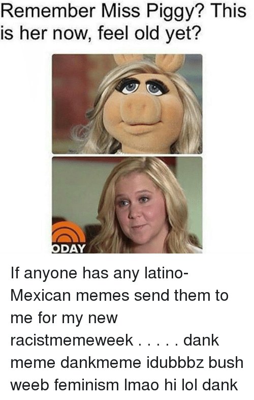 Mexican Meme: Remember Miss Pig  This  is her now, feel old yet?  DAY If anyone has any latino-Mexican memes send them to me for my new racistmemeweek . . . . . dank meme dankmeme idubbbz bush weeb feminism lmao hi lol dank
