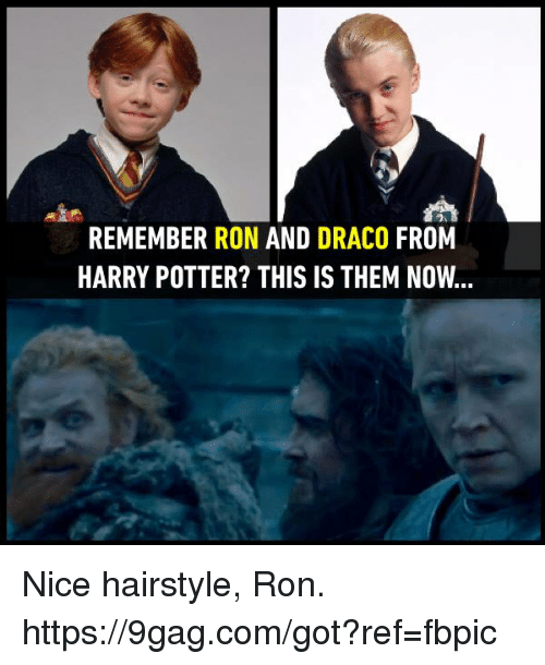 9gag, Dank, and Harry Potter: REMEMBER RON AND DRACO FROM  HARRY POTTER? THIS IS THEM NOW... Nice hairstyle, Ron. https://9gag.com/got?ref=fbpic