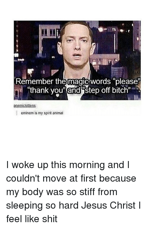 "stiffness: Remember the magic words ""please""  ""thank you"" and step off bitch""  anemickittens:  eminem is my spirit animal I woke up this morning and I couldn't move at first because my body was so stiff from sleeping so hard Jesus Christ I feel like shit"