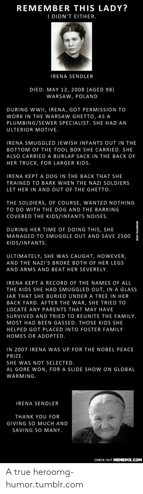 Al Gore: REMEMBER THIS LADY?  I DIDN'T EITHER.  IRENA SENDLER  DIED: MAY 12, 2008 (AGED 98)  WARSAW, POLAND  DURING WWII, IRENA, GOT PERMISSION TO  WORK IN THE WARSAW GHETTO, AS A  PLUMBING/SEWER SPECIALIST. SHE HAD AN  ULTERIOR MOTIVE.  IRENA SMUGGLED JEWISH INFANTS OUT IN THE  BOTTOM OF THE TOOL BOX SHE CARRIED. SHE  ALSO CARRIED A BURLAP SACK IN THE BACK OF  HER TRUCK, FOR LARGER KIDS.  IRENA KEPT A DOG IN THE BACK THAT SHE  TRAINED TO BARK WHEN THE NAZI SOLDIERS  LET HER IN AND OUT OF THE GHETTO.  THE SOLDIERS, OF COURSE, WANTED NOTHING  TO DO WITH THE DOG AND THE BARKING  COVERED THE KIDS/INFANTS NOISES.  DURING HER TIME OF DOING THIS, SHE  MANAGED TO SMUGGLE OUT AND SAVE 2500  KIDS/INFANTS.  ULTIMATELY, SHE WAS CAUGHT, HOWEVER,  AND THE NAZI'S BROKE BOTH OF HER LEGS  AND ARMS AND BEAT HER SEVERELY.  IRENA KEPT A RECORD OF THE NAMES OF ALL  THE KIDS SHE HAD SMUGGLED OUT, IN A GLASS  JAR THAT SHE BURIED UNDER A TREE IN HER  BACK YARD. AFTER THE WAR, SHE TRIED TO  LOCATE ANY PARENTS THAT MAY HAVE  SURVIVED AND TRIED TO REUNITE THE FAMILY.  MOST HAD BEEN GASSED. THOSE KIDS SHE  HELPED GOT PLACED INTO FOSTER FAMILY  HOMES OR ADOPTED.  IN 2007 IRENA WAS UP FOR THE NOBEL PEACE  PRIZE.  SHE WAS NOT SELECTED.  AL GORE WON, FOR A SLIDE SHOW ON GLOBAL  WARMING.  IRENA SENDLER  THANK YOU FOR  GIVING SO MUCH AND  SAVING SO MANY.  CНЕCK OUT MEМЕРIХ.COM A true heroomg-humor.tumblr.com