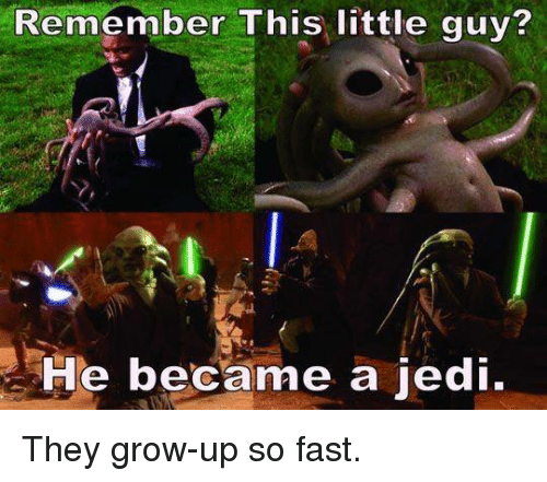 Funny, Jedi, and Grow: Remember This little guy?  He became a jedi. They grow-up so fast.