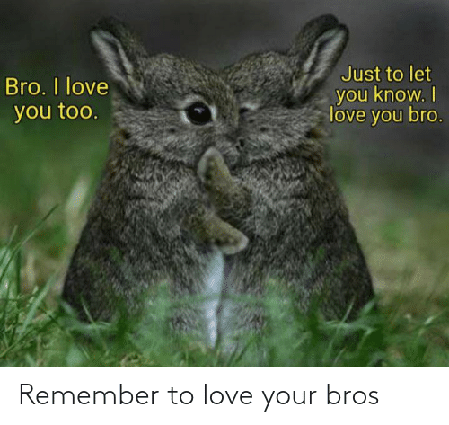 bros: Remember to love your bros