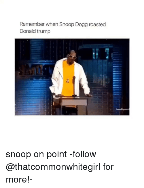 roast: Remember when Snoop Dogg roasted  Donald trump snoop on point -follow @thatcommonwhitegirl for more!-