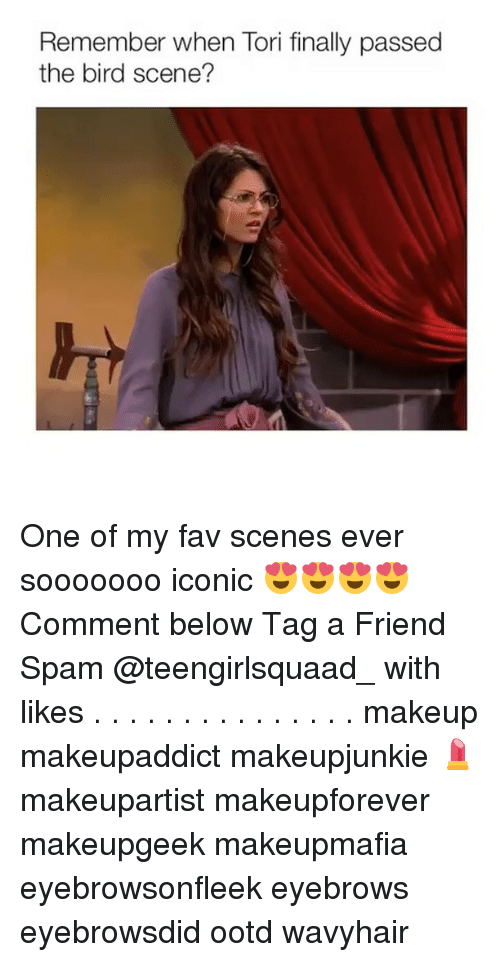 Memes, 🤖, and Spam: Remember when Tori finally passed  the bird scene? One of my fav scenes ever sooooooo iconic 😍😍😍😍 Comment below Tag a Friend Spam @teengirlsquaad_ with likes . . . . . . . . . . . . . . . makeup makeupaddict makeupjunkie 💄 makeupartist makeupforever makeupgeek makeupmafia eyebrowsonfleek eyebrows eyebrowsdid ootd wavyhair