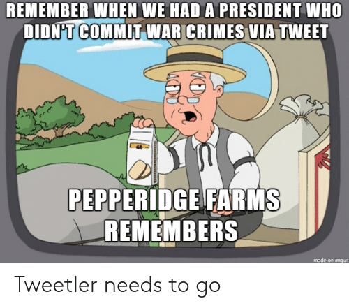 president: REMEMBER WHEN WE HAD A PRESIDENT WHO  DIDN'T COMMIT WAR CRIMES VIA TWEET  PEPPERIDGE FARMS  REMEMBERS  made on imgur Tweetler needs to go