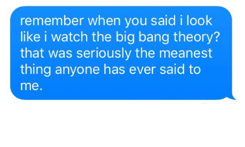 The Big Bang Theory: remember when you said i look  like i watch the big bang theory?  that was seriously the meanest  thing anyone has ever said to  me
