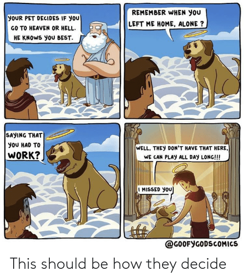 Heaven: REMEMBER WHEN YOU  YOUR PET DECIDES IF YOU  GO TO HEAVEN OR HELL.  HE KNOWS yoU BEST.  LEFT ME HOME, ALONE ?  SAYING THAT  yOU HAD TO  WELL, THEY DON'T HAVE THAT HERE,  WORK?  WE CAN PLAY ALL DAY LONG!!!  I MISSED YOU  @GOOFYGODSCOMICS This should be how they decide