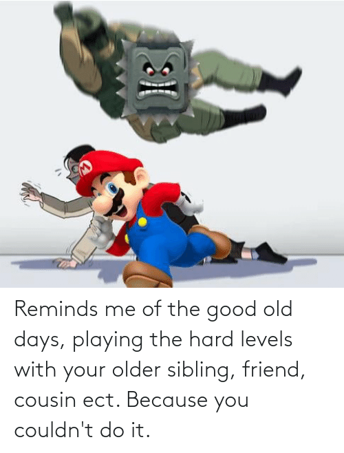 Older Sibling: Reminds me of the good old days, playing the hard levels with your older sibling, friend, cousin ect. Because you couldn't do it.