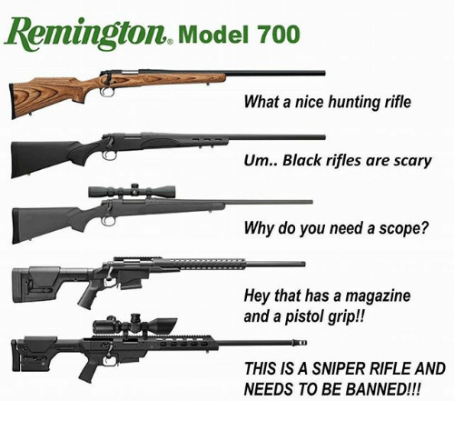 scope: Remington. Model 700  What a nice hunting rifle  Um.. Black rifles are scary  Why do you need a scope?  Hey that has a magazine  and a pistol grip!  THIS IS A SNIPER RIFLE AND  NEEDS TO BE BANNED!!!