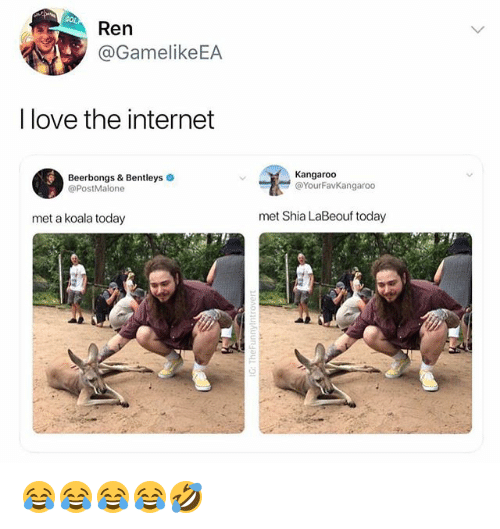 Internet, Love, and Shia LaBeouf: Ren  @GamelikeEA  I love the internet  Beerbongs & Bentleys  @PostMalone  Kangaroo  @YourFavKangaroo  met a koala today  met Shia LaBeouf today 😂😂😂😂🤣