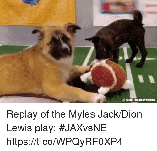 Sports, Dion, and Play: Replay of the Myles Jack/Dion Lewis play: #JAXvsNE https://t.co/WPQyRF0XP4