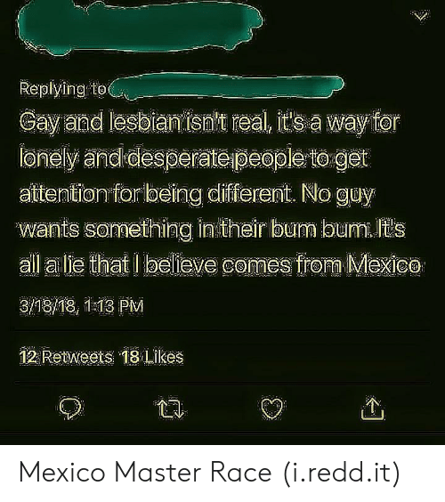 alie: Replying to  Gay and lesbian isn't real, s a way for  ionely and desperateipeople to get  attention for being different. No guy  vwranile sormelhing intheir bum bumn ils  all alie that I believe comes frora Mexico  3/18/18, 1:13 PM  12 Retweets 18 Likes  个 Mexico Master Race (i.redd.it)