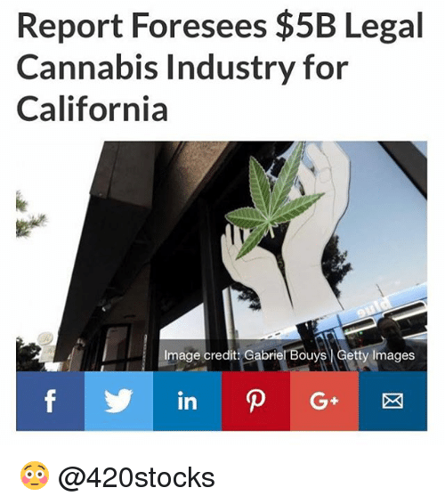 Memes, California, and Getty Images: Report Foresees $5B Legal  Cannabis Industry for  California  Image credit: Gabriel Bouys Getty Images 😳 @420stocks