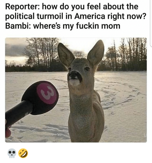 America, Bambi, and Memes: Reporter: how do you feel about the  political turmoil in America right now?  Bambi: where's my fuckin mom 💀🤣