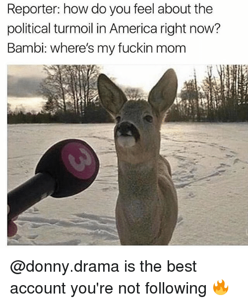 America, Bambi, and Best: Reporter: how do you feel about the  political turmoil in America right now?  Bambi: where's my fuckin mom @donny.drama is the best account you're not following 🔥