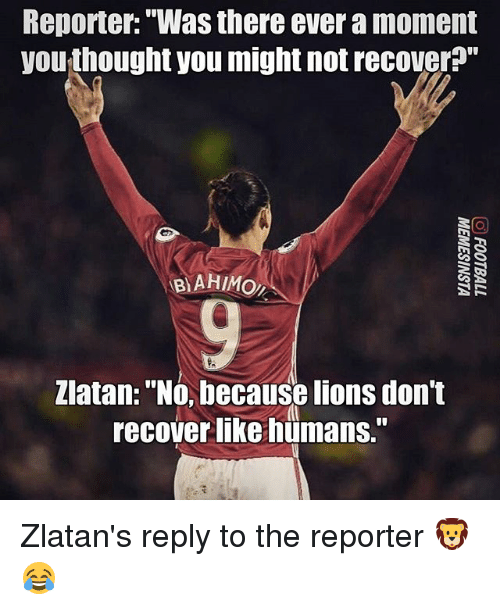 """Memes, Lions, and Thought: Reporter:""""Was there ever a moment  you thought you might not recover?""""  BAHMO  Zlatan: """"No, because lions don't  recover like hümans."""" Zlatan's reply to the reporter 🦁😂"""