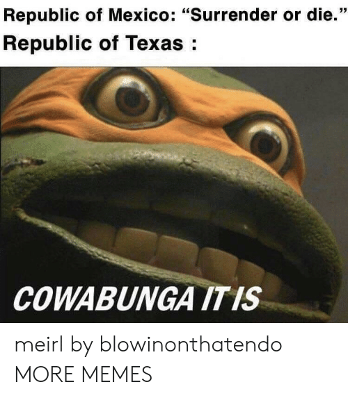 """Surrender: Republic of Mexico: """"Surrender or die.""""  Republic of Texas:  COWABUNGA ITIS meirl by blowinonthatendo MORE MEMES"""
