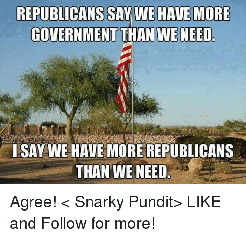 pundits: REPUBLICANS SAY WE HAVE MORE  GOVERNMENT THAN WE NEED  ISAY WE HAVE MORE REPUBLICANS  THAN WE NEED Agree!  < Snarky Pundit> LIKE and Follow for more!
