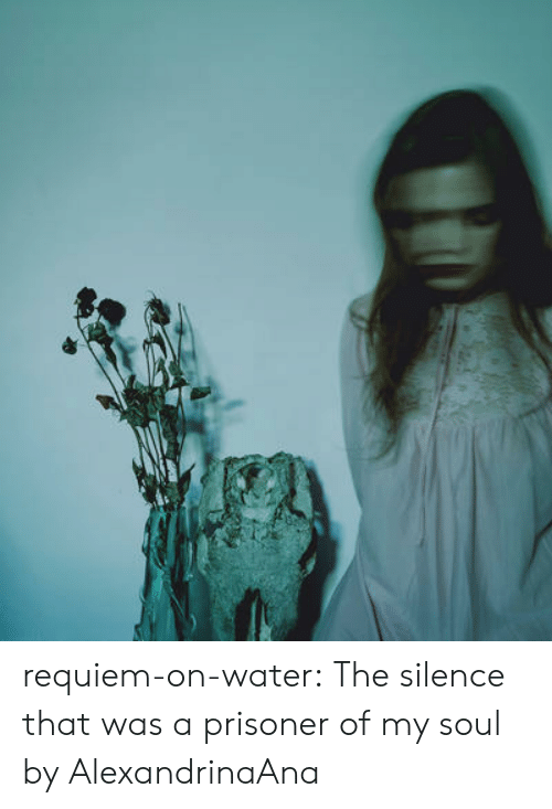 The Silence: requiem-on-water:  The silence that was a prisoner of my soul by AlexandrinaAna