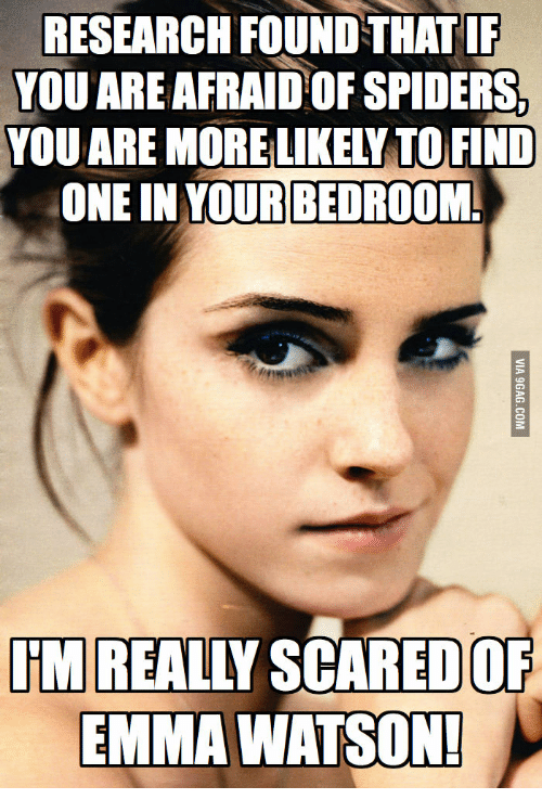 Emma Watson, Emma, and Watson: RESEARCH FOUND STHATIF  YOU ARENAFRAIDOFSPIDERS,  ONE IN YOUR BEDROOM  REALLY SCARED OF  EMMA WATSON!