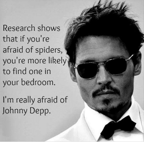 Afraid Of Spiders: Research shows  that if you're  afraid of spiders,  you're more likely  to find one in  your bedroom.  I'm really afraid of  Johnny Depp