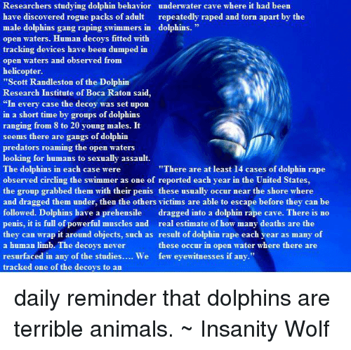 """Dolphins Raping: Researchers studying dolphin behavior underwater cave where it had been  have discovered rogue packs of adult  repeatedly raped and torn apart by the  male dolphins gang raping swimmers in dolphins.  open waters. Human decoys fitted with  tracking devices have been dumped in  open waters and observed from  helicopter.  """"Scott Randleston of the Dolphin  Research Institute of Boca Raton said,  """"In every case the decoy was set upon  in a short time by groups of dolphins  ranging from 8 to 20 young males. It  seems there are gangs of dolphin  predators roaming the open waters  looking for humans to sexually assault.  """"There are at least 14 cases of dolphin rape  The dolphins in each case were  observed circling the er as one of reported each year in the United States  swimm  the group grabbed them with their penis these usually occur near the shore where  and dragged them under, then the others victims are able to escape before they can be  followed. Dolphins have a prehensile  dragged into a dolphin rape cave. There is no  penis, it is full of powerful muscles and real estimate of how many deaths are the  they can wrap it around objects, such as result of dolphin rape each year as many of  a human limb. The decoys never  these occur in open water where there are  resurfaced in any of the studies.  We few eyewitnesses if any.""""  tracked one of the decoys to an daily reminder that dolphins are terrible animals. ~ Insanity Wolf"""