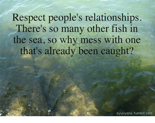 Respect people 39 s relationships there 39 s so many other fish for Other fish in the sea