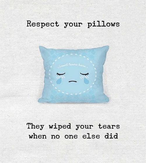 pillows: Respect your pillows  They wiped your tears  when no one else did