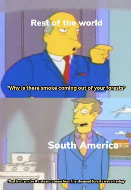 "America, Steam, and World: Rest of the world  ""Why is there smoke coming out of your forests  South America  OO  That Isn't smoke it's steam, steam from the steamed forests we're having"