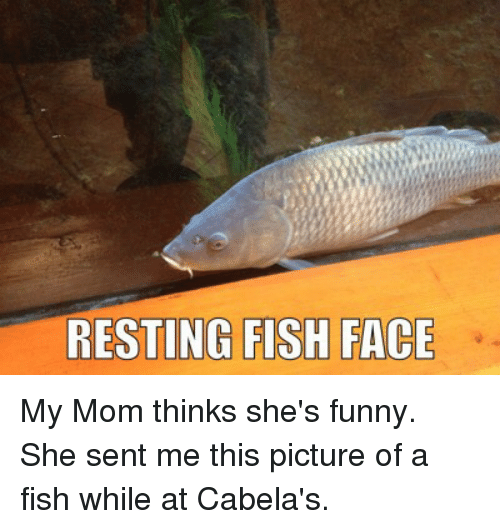 Funny, Moms, and Fish: RESTING FISH FACE My Mom thinks she's funny. She sent me this picture of a fish while at Cabela's.