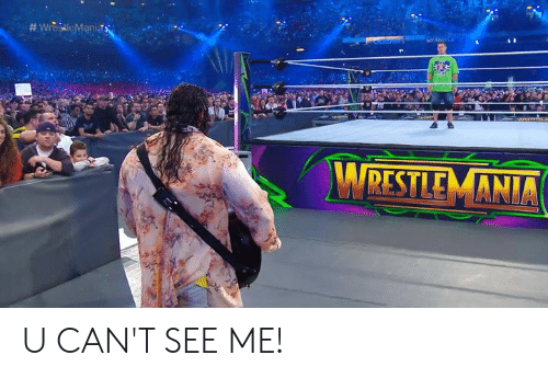 Cant See Me: RESTLE MANIA U CAN'T SEE ME!