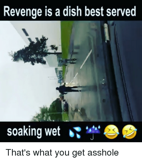 Memes, Revenge, and Best: Revenge is a dish best served  soaking wet That's what you get asshole