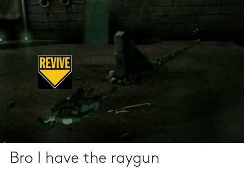 raygun: REVIVE Bro I have the raygun