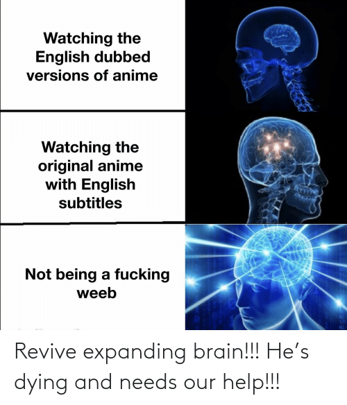 Expanding Brain: Revive expanding brain!!! He's dying and needs our help!!!