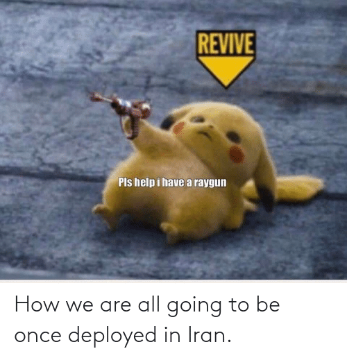 raygun: REVIVE  Pls help i havea raygun How we are all going to be once deployed in Iran.