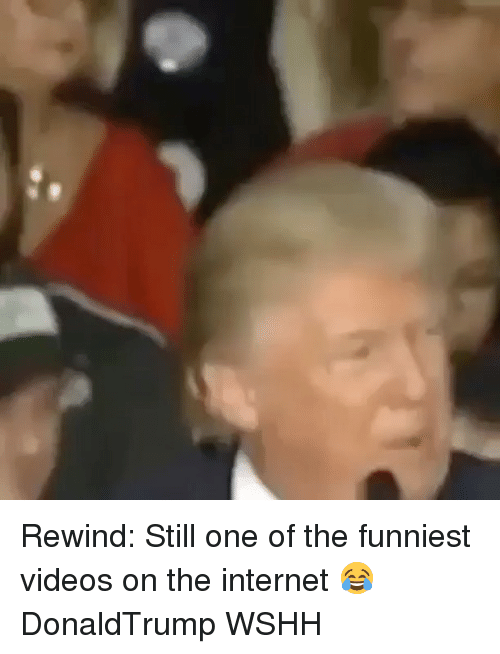 Memes, 🤖, and Funniest: Rewind: Still one of the funniest videos on the internet 😂 DonaldTrump WSHH